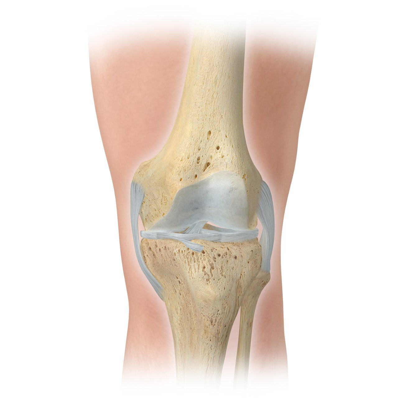 anterior knee - recovering from joint replacement surgery